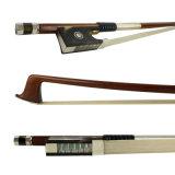 Curva de violino da madeira de Pernambuco com râ de Ehawksbill