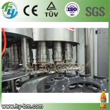Machine de remplissage de jus de bouteille d'animal familier de Rcgf 50-50-15