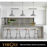 부엌 식품 저장실 내각은 디자인 부엌 가구 Tivo-0091V를 나아진다