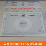Сертификат Анти--Фальшивки бумаги обеспеченностью с печатание бумаги водяной знак