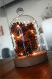 Indicatore luminoso della sfera di vetro di natale del campione libero di alta qualità per la decorazione di natale