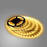 Calidad Aprobado 12V CC 120leds / M SMD2835 LED tira flexible