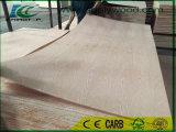madera contrachapada de la suposición del roble rojo de 5.2m m para la Arabia Saudita