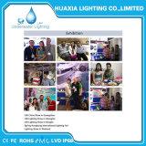 IP68 LEDの水中点のプールライト(三脚が付いている防水照明器具)