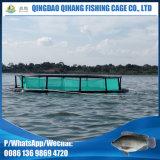 Подгоняно конструировано клетка рыб для водохозяйства