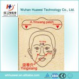 Corrección herbaria médica china de la nariz para curar rinitis