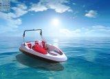 barcos do esporte da fibra de vidro de 16FT mini para a família