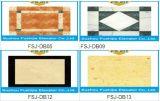 La elevación de la capacidad 1000kg Passanger del Manufactory profesional ISO14001 aprobó