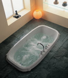作り付けシリーズ浴槽(D8106)
