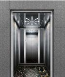 스테인리스 그물에 걸리기를 가진 전송자 상승 홈 엘리베이터