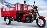 Drei Rad-Motorrad des Rad-Motorrad-3 (SP300X)
