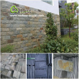 Granite / Ardoise / Quartzite / Travertin / Calcaire Mushroom Wall Stone