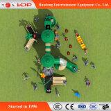 卸売はからかう公園(HD17-003AB)のための屋外の適性装置を