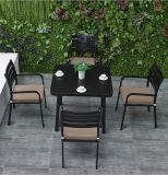 Garten-Tisch und 4 Stühle, die gesetzte Patio-Möbel vier setzende Sets (TG-HL808, speisen)