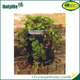 Onlylife Garten-Patio wachsen den Beutel, der für Gemüse Breathable ist