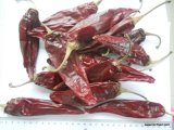Piments d'un rouge ardent secs