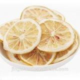 Commerce de gros lyophilisés citron