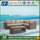 Mobiliário de exterior Wicker Moda sofá de lazer ao ar livre (TG-800)