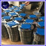 ANSI DIN van China Klasse 150 Pn16 de Flens van het Smeedstuk