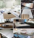 Nuove parti superiori progettate di vanità del materiale da costruzione delle lastre del quarzo per la cucina