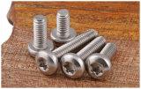 Parafusos de segurança em aço inoxidável Ss304 18-8