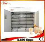 Máquina Yzite -24 da incubação de 5280 ovos