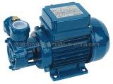 고품질 무쇠 가구 말초 수도 펌프 (QB60)