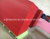 De beste Verkopende Goedkope Snelle Mat Van uitstekende kwaliteit van het Judo van de Oppervlakte van pvc van de Levering voor de opleiding van het Judo van Bjj MMA