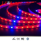 5m/Roll 직업적인 LED 플랜트 Growlight 밧줄 램프 끈 빛 Maunfacurer