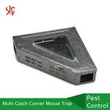 Trappe faisante le coin humanitaire de souris en métal multi de loquet avec le premier couvercle clair