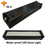Lámpara Growing impermeable 170With210With400With490W de la fuente LED
