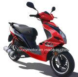 Motorino adulto del gas di Moto del combustibile della qualità superiore 150cc/125cc/50cc/49cc (Corbra)