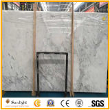 Neuer Kolabaum-weißer Marmor, graues hölzernes/Kristall/Volakas/Carrara-Weiß-Marmor