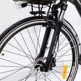 Bici eléctrica de la batería de litio de Samsung con el MEDIADOS DE motor (FR-TDB15)