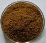 10:1 naturale superiore dell'estratto del compagno di Yerba, polvere dell'estratto dell'erba mate, Estratto all'ingrosso all'ingrosso del compagno di Yerba