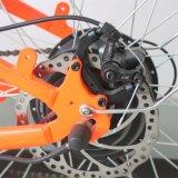 incrociatore da vendere, bicicletta elettrica poco costosa della spiaggia della batteria di litio 48V