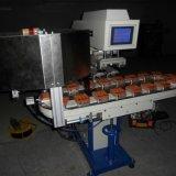 Stampatrice del rilievo del trasportatore di colore di alta velocità due