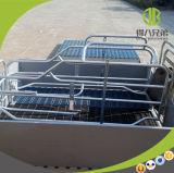 Casse di figliata di alta qualità di plastica per la gabbia del maiale della scrofa