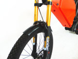 Nuevo diseño bici eléctrica gorda de 1000 vatios, bici de montaña de Ebike