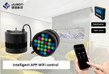 2017 nuovo indicatore luminoso dell'acquario LED di alta qualità di disegno 120W