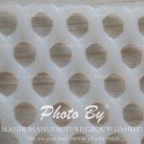 HDPEの明白な織り方プラスチックワイヤー網