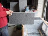 [غ684] جمال أسود /Granite قرميد لأنّ جدار/أرضيّة