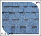 Azulejos de material para techos de asfalto de la base de la fibra de vidrio del puerto/ripia azules del asfalto