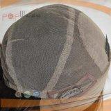 Perruque en soie de femmes de cheveux humains de qualité première (PPG-l-0733)