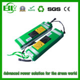 Electric Folding Bike Mini E-Bike Rechargeable Battery Pack를 위한 E-Bike Battery 36V 10ah Li 이온 Battery