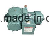 Halbhermetischer hin- und herbewegender Kompressor des Träger-06e für Klimaanlage