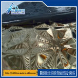 201 304 allégement titanique de la plaque 3D de couleur d'acier inoxydable de plaque métallique