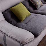 Sofà del tessuto di disegno moderno della mobilia del salone (FB1137)