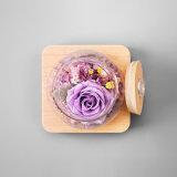 Nuovo regalo secco naturale del fiore per la decorazione di cerimonia nuziale