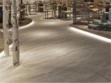 Plancher en céramique émaillée de porcelaine carrelage mural rustique (SHA603)
